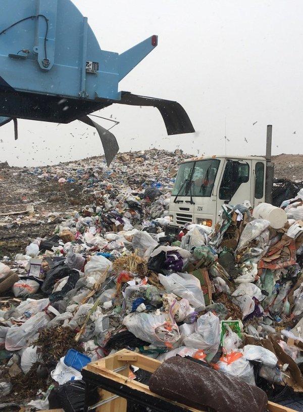 Week 4: Segregate the Waste in your Zero Waste Kitchen