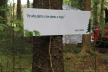 This was great too, poetry in amongst the forest