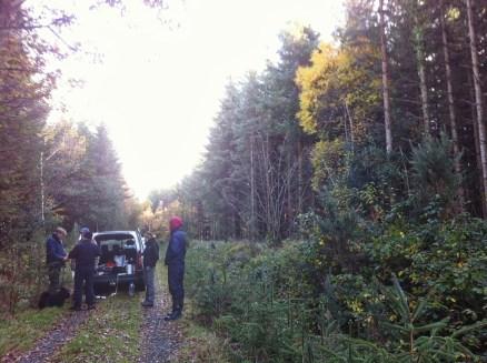 Meeting at the Coillte Tikincor (near Clonmel) Marteloscope (tree - marking training) site