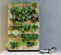 DIY Vertical Gardens - ECO BROOKLYN