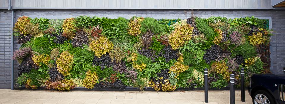 Planters Outdoor Decor