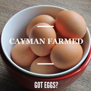 cayman farmed