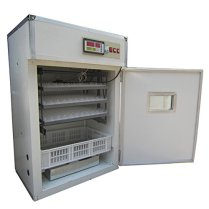 kenchic incubators