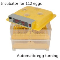 best automatic egg incubator