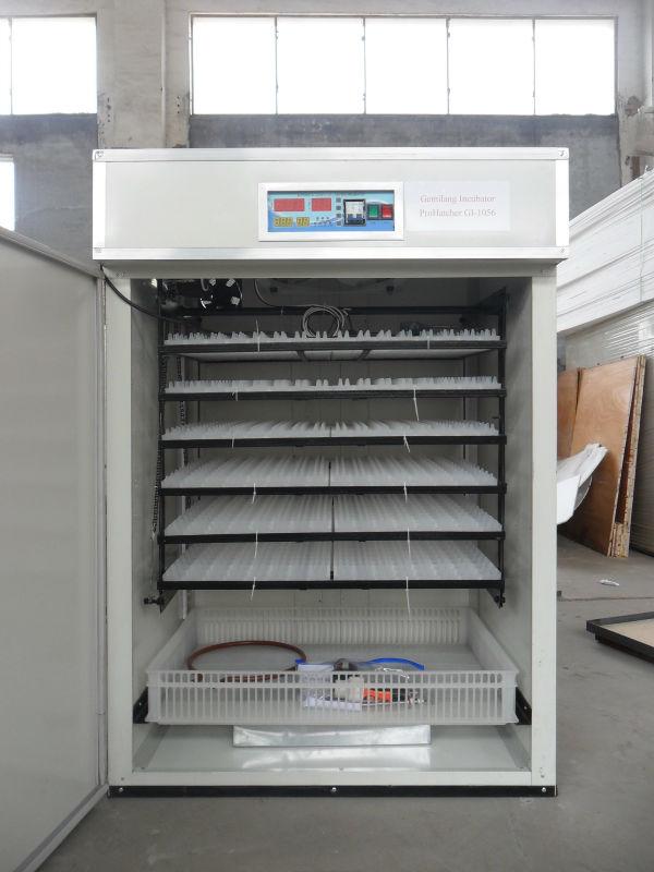 kenchic incubator