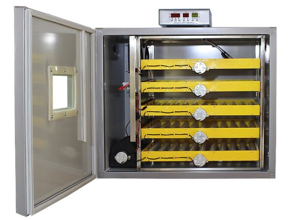 300 solar egg incubator
