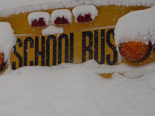Is biodiesel to blame for buses not running in cold Minnesota temperatures?