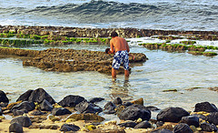 Environmental Kid Crusaders:  12-Year-Old Protects Maui's Coral Reefs