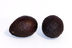 Avocado fruit photographed on a white background