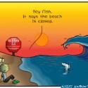 Hank D and the Bee: Beach Closings