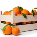 Save organic standards