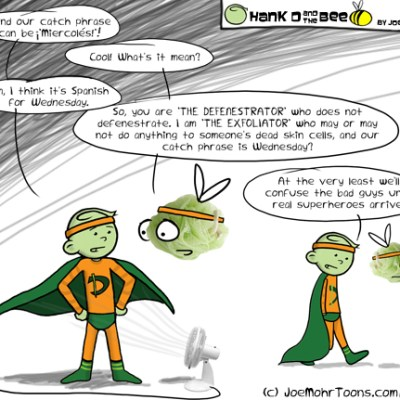 Hank D and the Bee: The Defenestrator and The Exfoliator–Dynamic Duo?