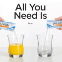 100% Natural Liquid Iron Supplement pur-Absorb