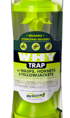 Wasps, hornets, and yellow jacket solutions