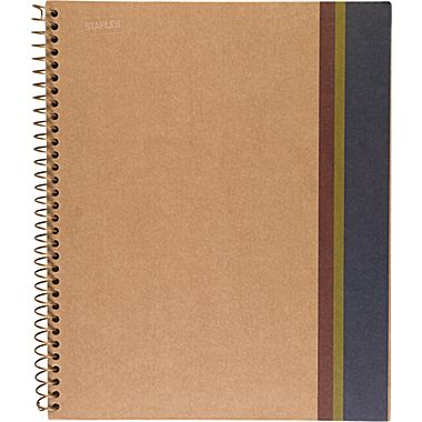 Sustainable Earth by Staples:  Sugarcane based notebooks