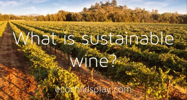 St. Amant sustainable vineyard