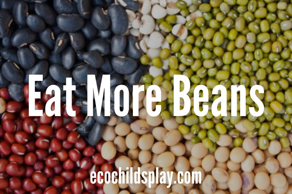 Eat more plant-based protein for better health and weight management!