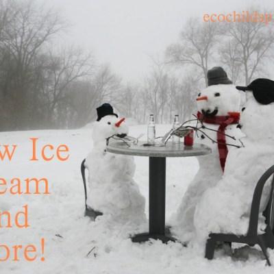 Snow Ice Cream Recipes and  More Snow!  Snow! Snow!