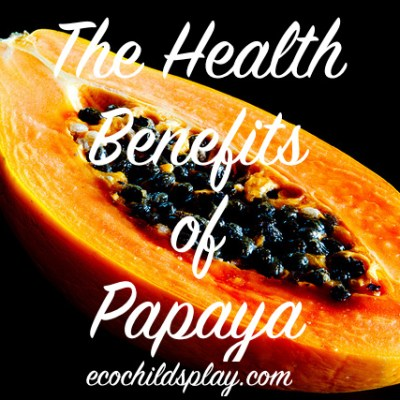 Papaya's Health Benefits