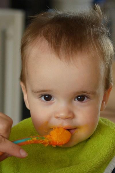 Baby Essentials That Aren't, Part 7: Baby Food