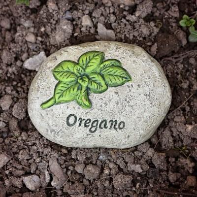 North American Herb & Spice:  Oil of Wild Oregano and Wild Chaga