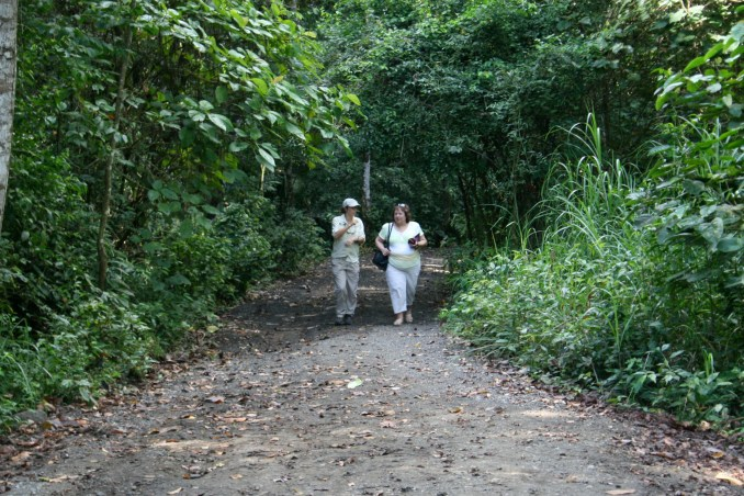 Hiking tour the rainforest with EcoCircuitos