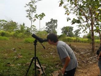 birding in Darien