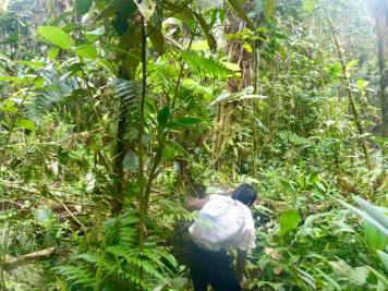 darien jungle trek with ecocircuitos