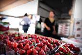 C:\Users\Steve\Pictures\059-3-0328_thumb St Paul Farmers Market.jpg