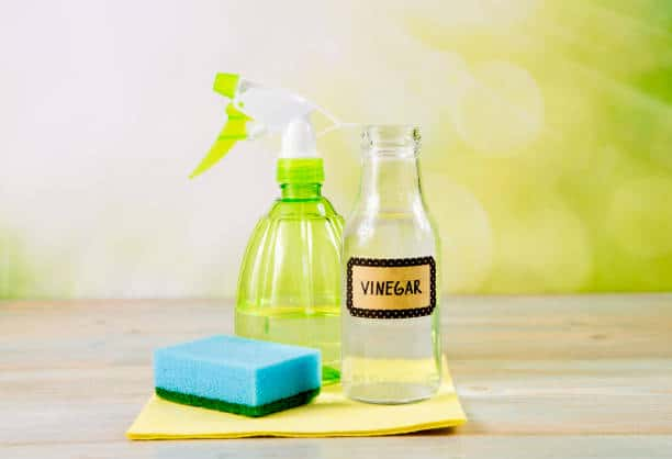 Using Vinegar to..{Clean Your Toilet Bowl}