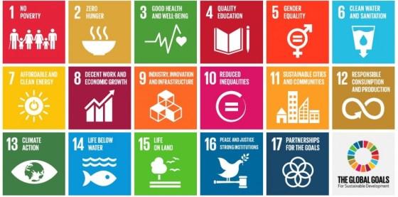 17 цілей сталого розвитку