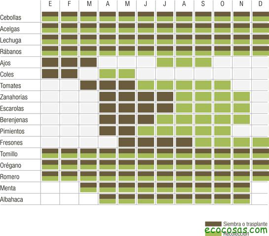 calendario de siembra Como cultivar con macetas y no morir en el intento (Segunda parte)