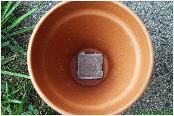 gardening watering ollas 03 Sistema de riego, hecho con dos macetas