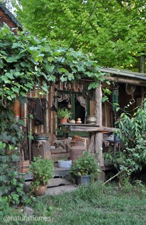 offgrid-jill-redwood2