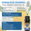 German Blue Chamomile Oil