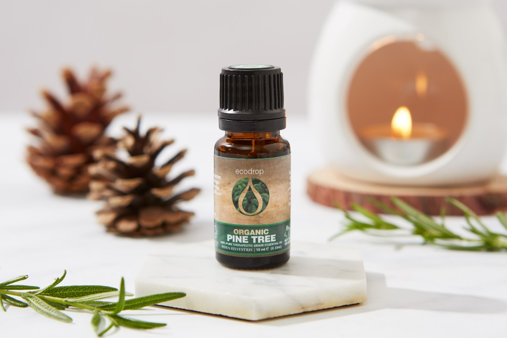 pine tree essential oil