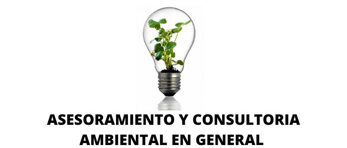 Consultoría Ambiental: Somos la mejor consultora ecológica