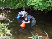 water quality surveys