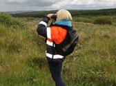 Breeding-Bird-Survey