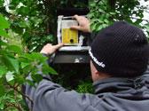 Anabat-bat-survey