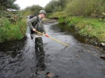 electrofishing survey (2)