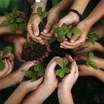 kids-hands-holding-plants