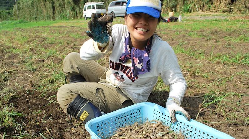 村おこしボランティア体験記【中之島・2011年8月19日〜28日・前編】