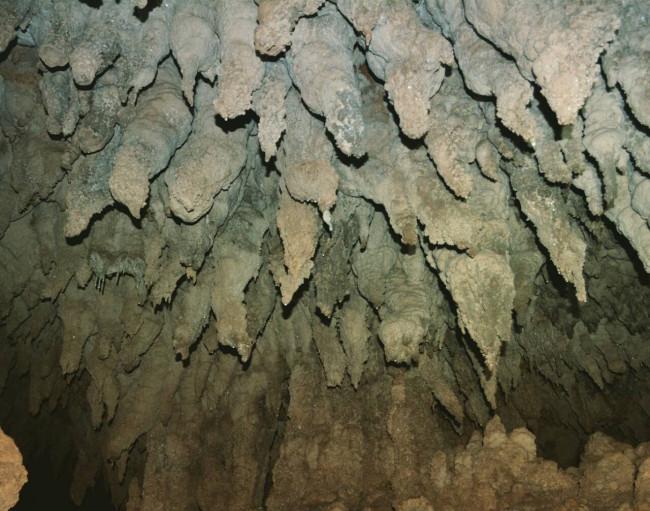 宝島で鍾乳洞探検