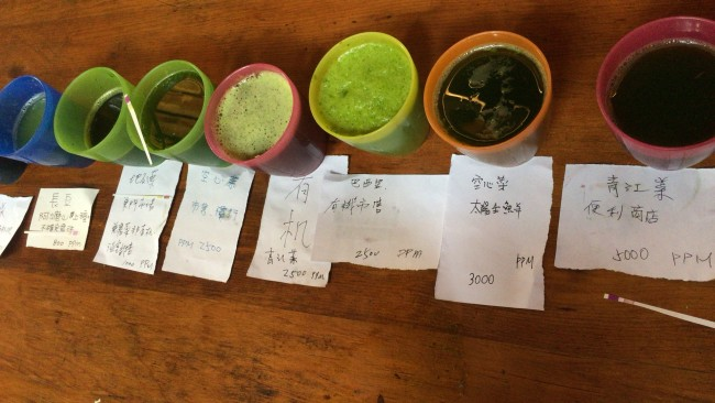 硝酸塩の実験