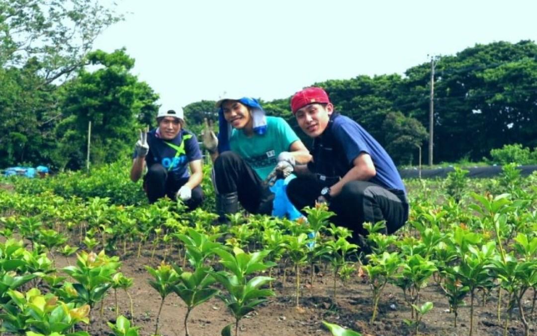 農作業初日。受け入れ先の方々の心の広さに感銘を受けました。