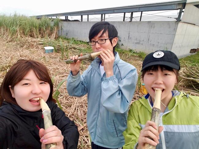 いよいよ喜界島での農作業に!
