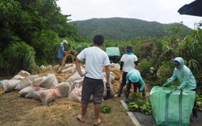 台風と向き合いながらの堆肥作り