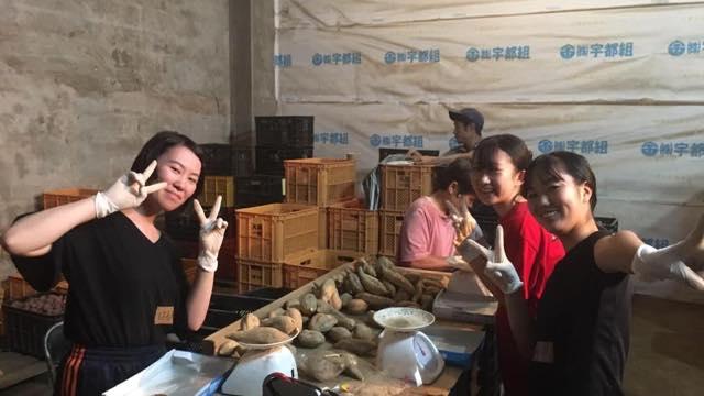 村おこしボランティア【種子島コース】2019夏E日程体験記