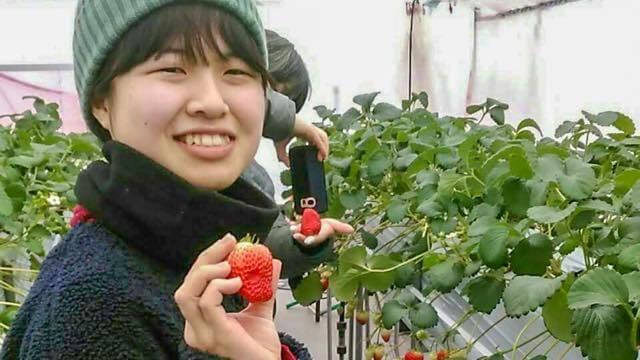 村おこしボランティア【秋田太田町コース】体験記